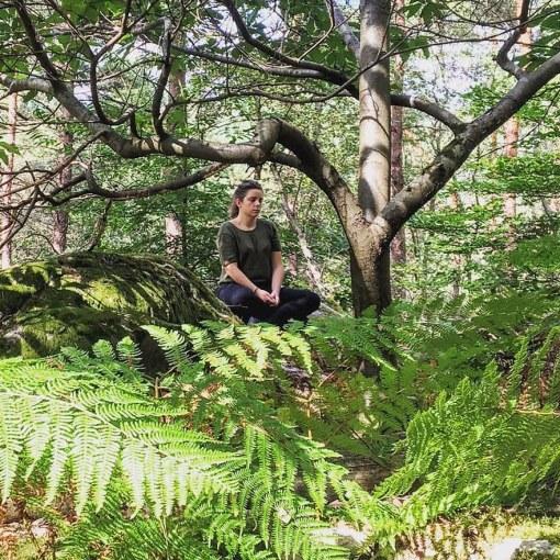 Meditation en forêt de fontainebleau