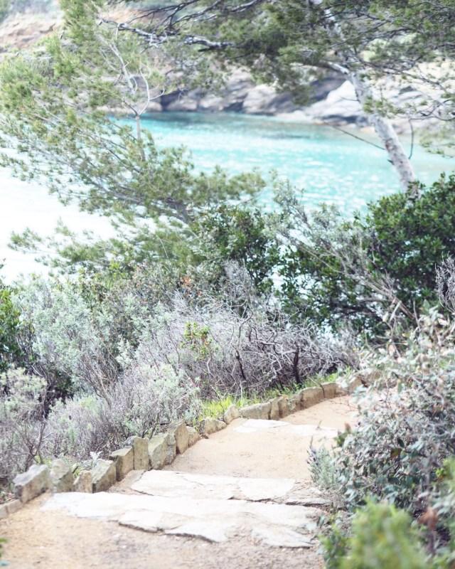 Domaine De Rayol Visite Guidee Du Jardin Mediterraneen