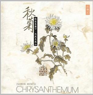 CD Chrysanthemum