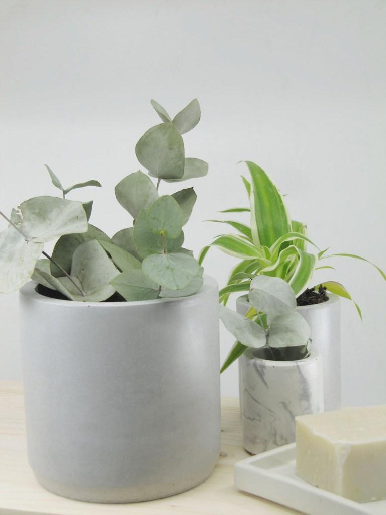 beton cache pot