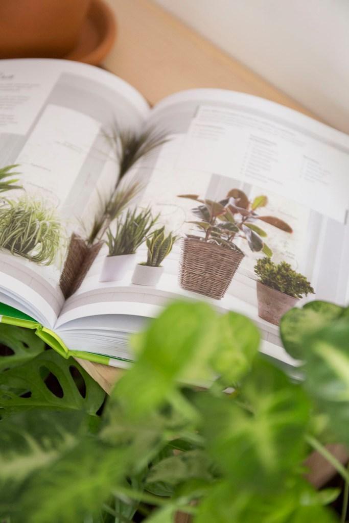 livres selection plante