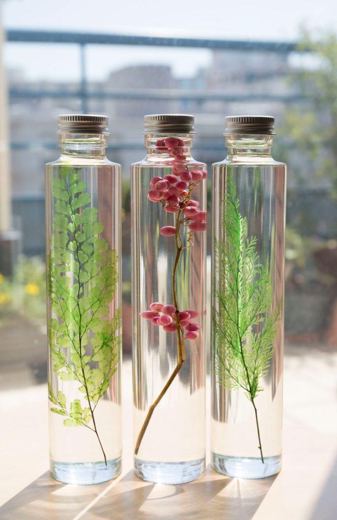 plante slow immergee pharmacy