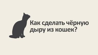 Как сделать чёрную дыру из кошек ? чёрная дыра физика наука Vert Dider