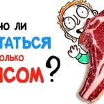 Можно ли питаться только мясом