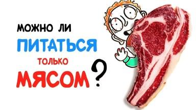 Можно ли питаться только мясом? Vert Dider AsapSCIENCE диета здоровье питаться мясом