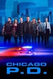 Chicago P.D. Serie Completa