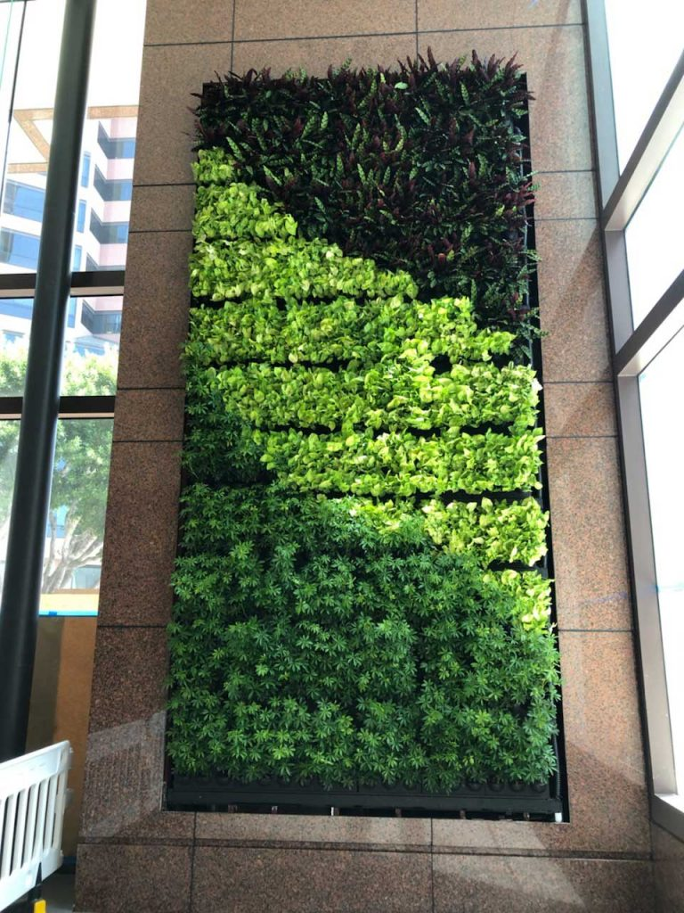 Architects & Designers  Living Walls, Vertical Garden Design and