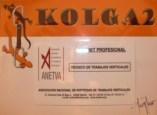 Carnet profesional - Técnico en Trabajos Verticales