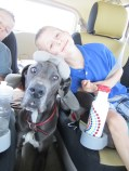 I kept the entire back of the van clear for Blue's bed but he spent the entire time wedged between the boys' seats.