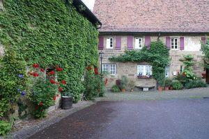 Gebäudebegrünung in Amthof in Oberderdingen