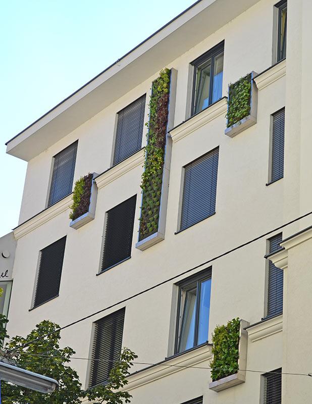 Grüner Wandschmuck an einem Wohnhaus in Wien