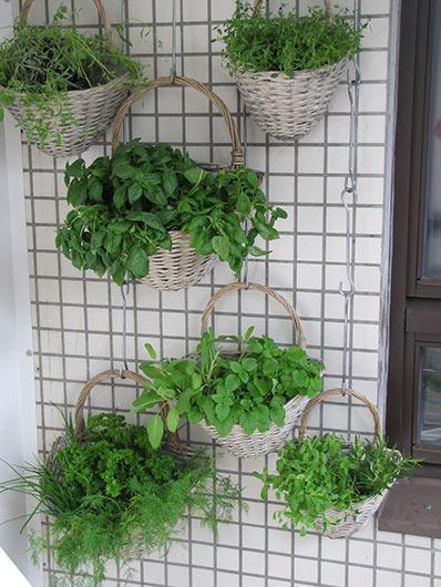 Vertikaler Garten aus Körben