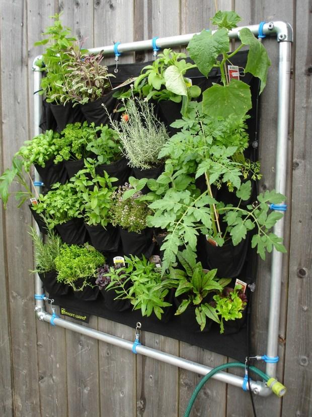 Ein vertikaler Garten mittels Pflanztaschen