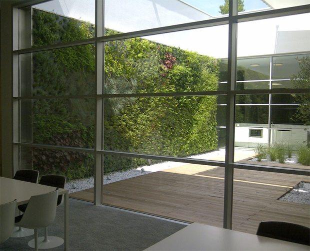 Fassadenbegrünung mittels vertikaler Gärtnerei in Graz