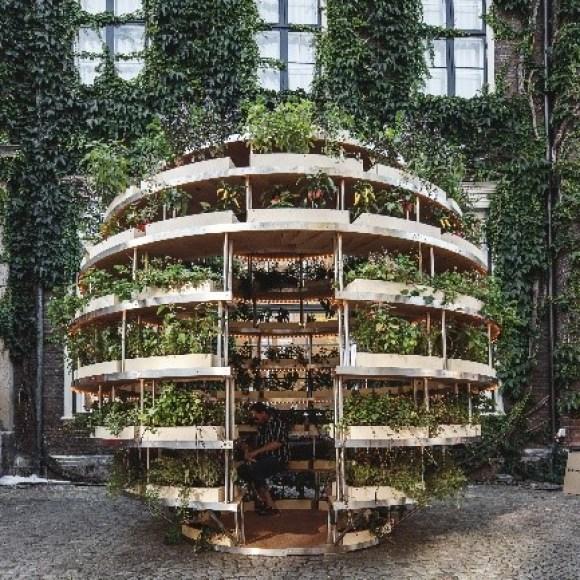 In diesem bestückten Growroom wachsen Blumen, Kräuter und Gemüse
