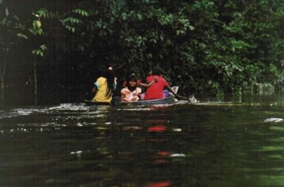 jungle enfant-1