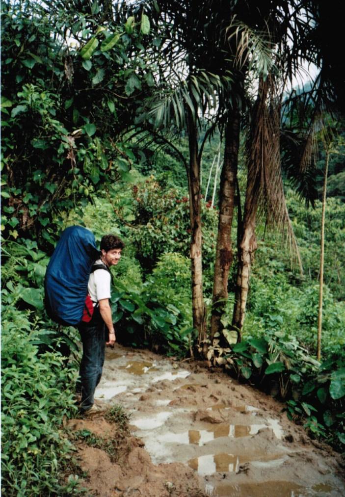 jungle marche stef-1
