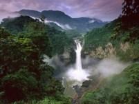 Amazone gebied - Ecuador