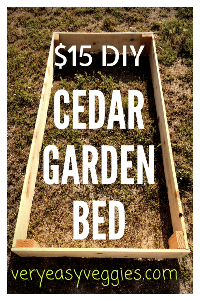 A simple tutorial for DIY cheap raised garden beds made of cedar planks for under $15. You can make these raised garden boxes even cheaper if you have extra cedar fence pickets.