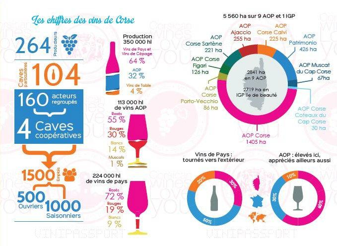 Infographie sur les vins corses par CIVC