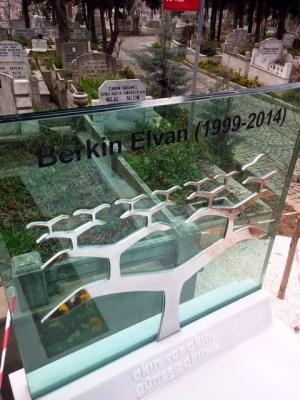 BerkinElvan_mezarı (1)