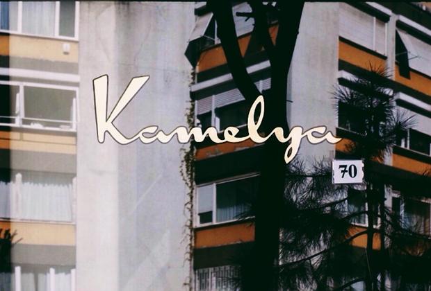 Kamelya_Tesvikiye