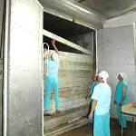 Чистая зона и изготовление грибных блоков вешенки