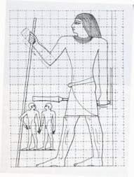 BioGeometry ruler