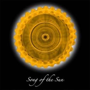 Cymatics Vibrational Art