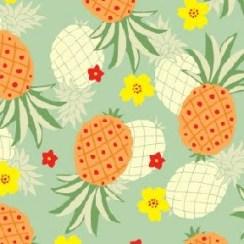 Stampa Ananas3
