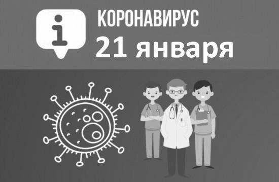 Оперативная сводка по коронавирусу в Севастополе на 21 января