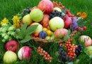 Завтра Яблочный Спас: что можно, а что нельзя святить в церкви