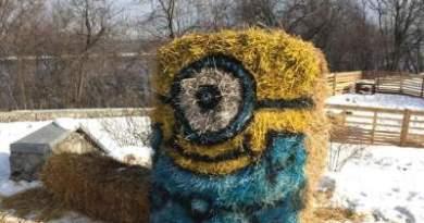 В столице Украины появились забавные «смайлики»