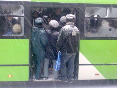 В Ташкенте руководство автопарков пересадили на общественный транспорт