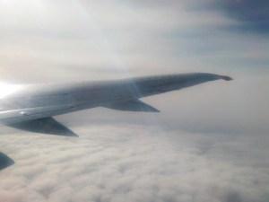 Узбекистанец умер в самолете Москва - Ташкент, вернувшемся во «Внуково»