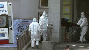 Лечивший людей от коронавируса врач скончался в Ухани