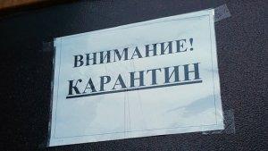 Минюст: за нарушение карантина накажут в Узбекистане