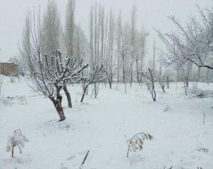 Снег выпал в Кашкадарьинской области