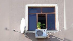 Житель многоэтажки выращивал коноплю в цветочных горшках в Бухаре