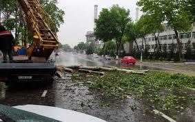 Сильная буря накроет Ташкент