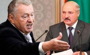 Жириновский призвал Лукашенко сойти с предвыборной дистанции