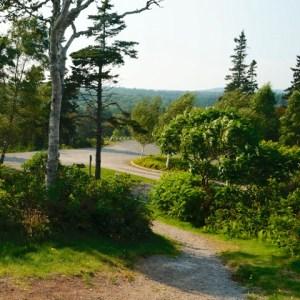 Trail - Fundy Bay Park