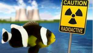Fish radioactivity, sign and nuclear power plant