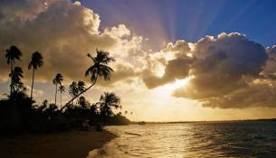 sunny-beach-sunset