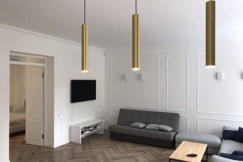 cozy sofa and TV