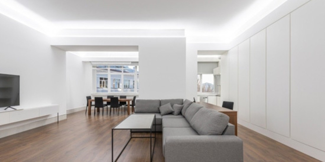light living with grey sofa