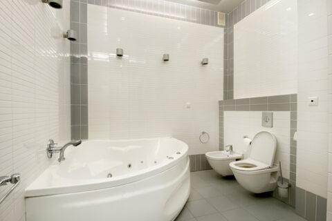 sauna and toilet