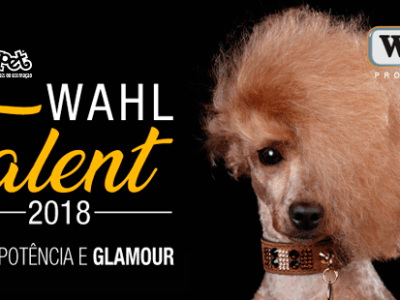 Concurso de tosa Wahl Talent Brasil