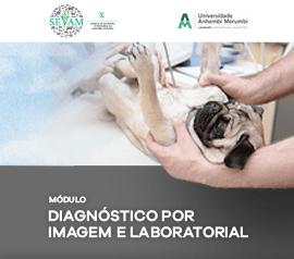 Módulo Teórico de Diagnóstico por Imagem e Laboratorial