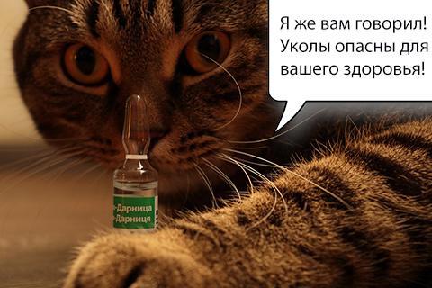 кот и ампула